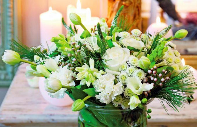 Květiny jako kouzelné hvězdy vánoc