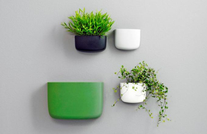 Flóra jako originální zelená svěžest